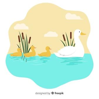 母鴨と一緒にいる彼女の雛