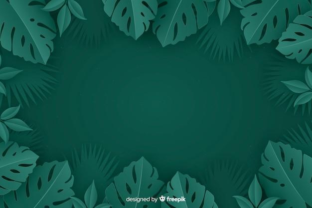 モンステラ植物とモノクロの背景