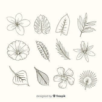 現実的な手描きの花と葉