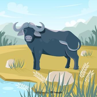 野生動物の水牛漫画イラスト