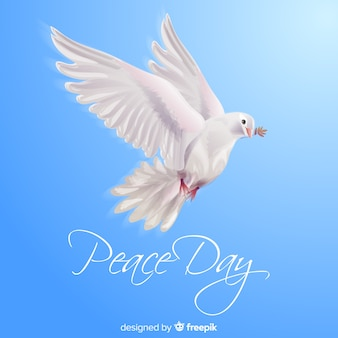 Концепция дня мира с реалистичным голубем