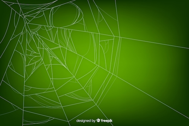 グラデーションで緑の現実的なクモの巣