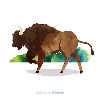野生動物のバッファローと水彩絵の具