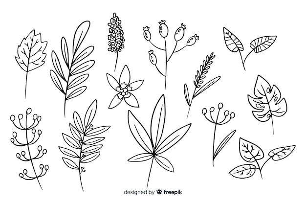 花の手描き飾りセット