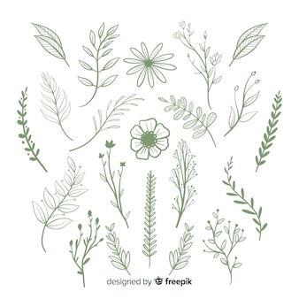 Цветочный набор рисованной орнамент