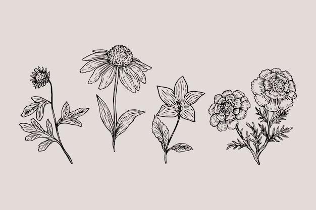 リアルな手描きのヴィンテージ植物の花コレクション