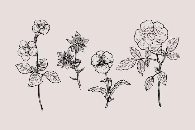 現実的な手描きのヴィンテージ植物の花セット