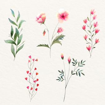 カラフルな水彩の野生の花