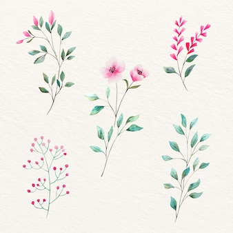 自然な水彩画の葉と花