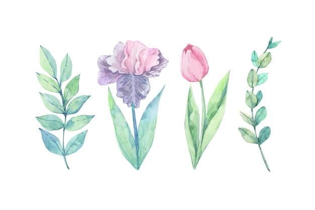 カラフルな水彩花