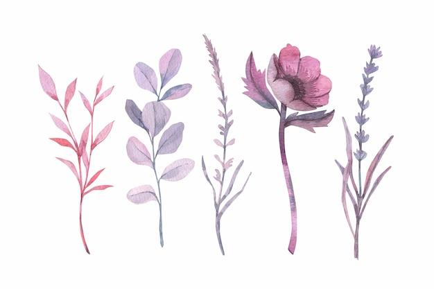 Красочные акварельные цветы