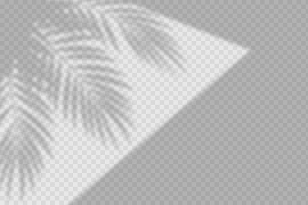 葉と透明な影のオーバーレイ効果
