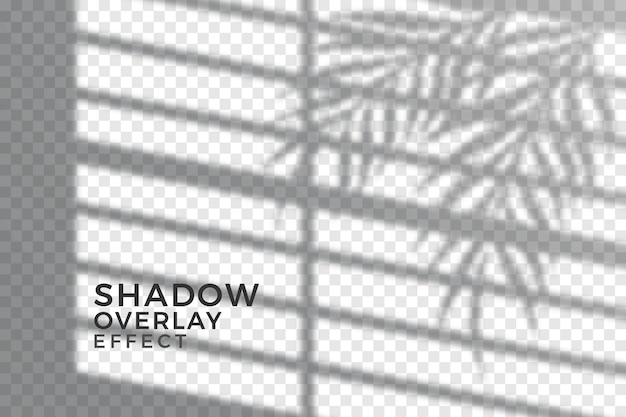 抽象的な透明な影の概念