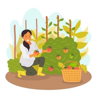 手で果物と農場の風景女性