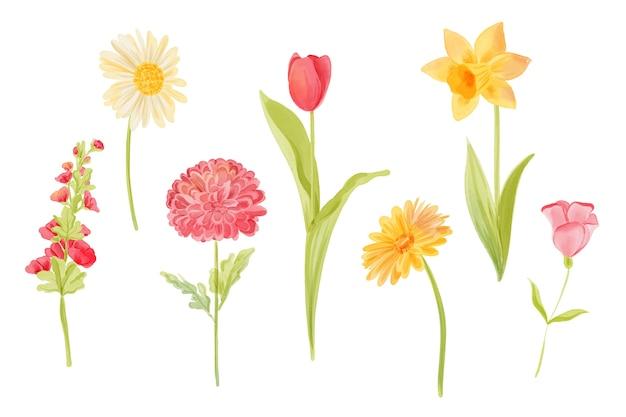 水彩春花コレクション