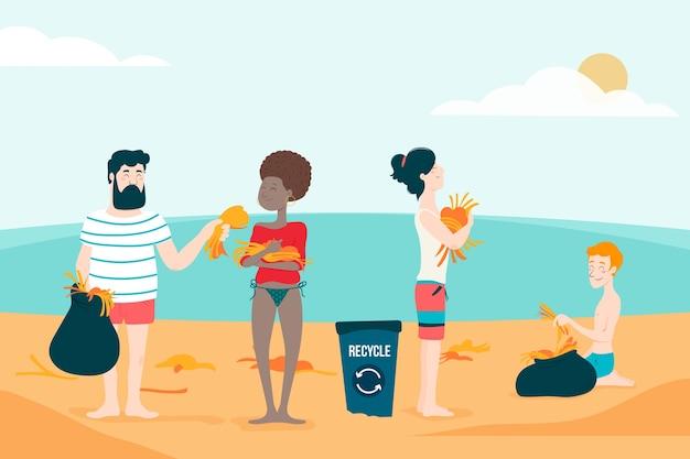 藻類からビーチを掃除する人々