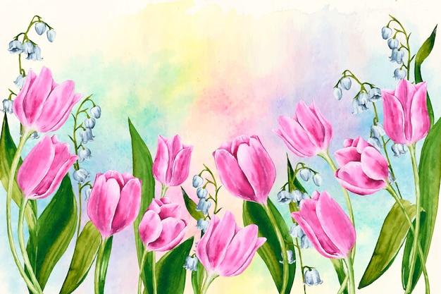色とりどりのチューリップと水彩春の背景