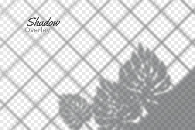 透明な影スタイルの灰色のオーバーレイ効果