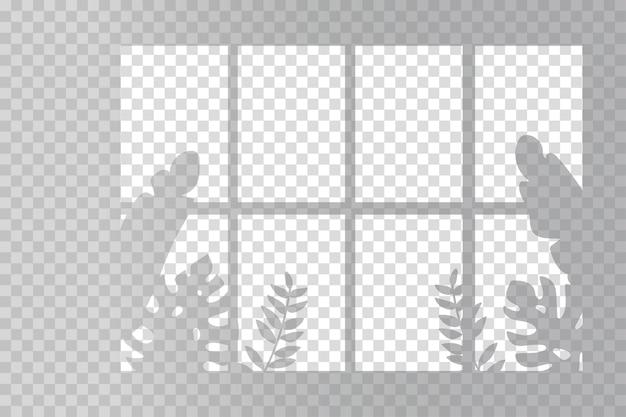 さまざまな植物の透明な影のオーバーレイ効果