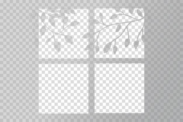 木の枝を持つ透明な影のオーバーレイ効果