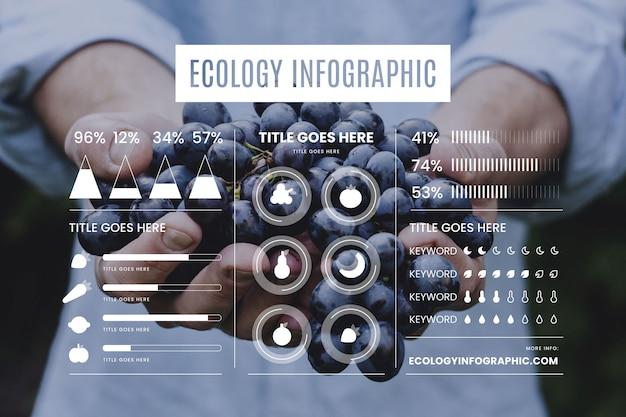 写真と生態インフォグラフィック