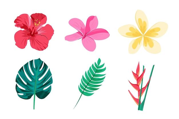Тропический пакет цветов и листьев