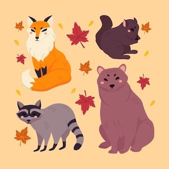 手描きの秋の森の動物コレクション