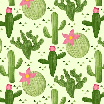 Концепция коллекции шаблонов кактус