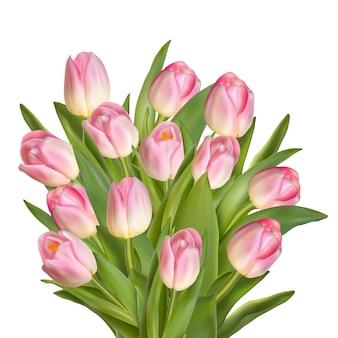 Красивый весенний фон с тюльпанами.