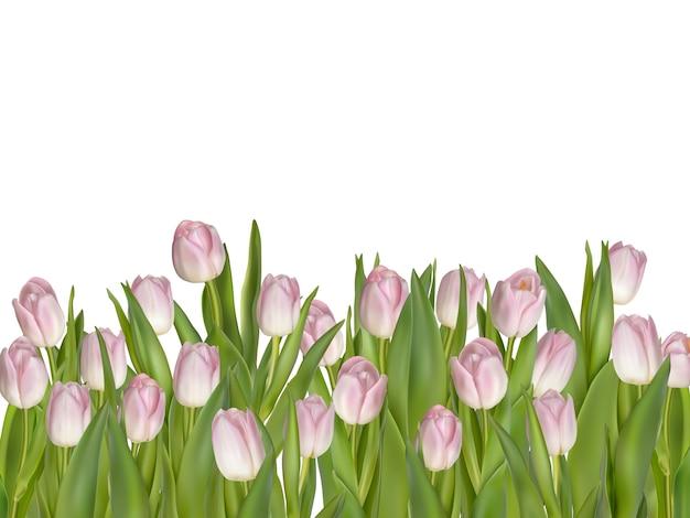 ピンクの新鮮な春の花の背景。