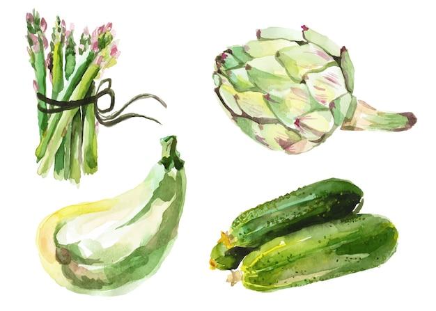 Акварельные овощи, изолированные на белом