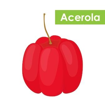 Векторные ягоды ацеролы