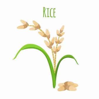 Рисовое растение