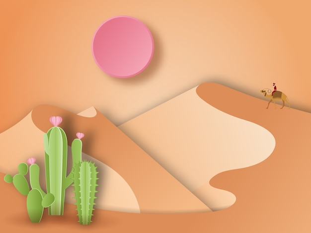 砂漠の風景とサボテンの植物