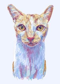生姜猫、かわいい子猫の肖像画、手描きのイラスト