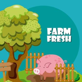 Ферма свежие мультфильмы