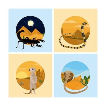 砂漠の動物のセット