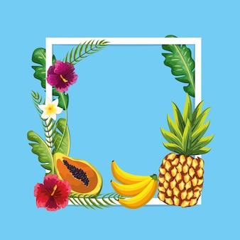 Вкусные фрукты с растениями и цветами красоты