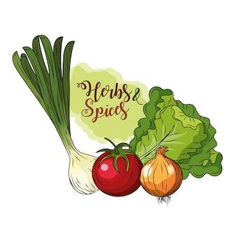 ハーブ、スパイス、植物、臓器食品