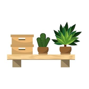 木製棚のボックス文書アーカイブと植物