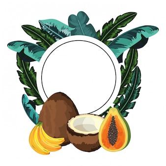 Мультфильм тропических фруктов