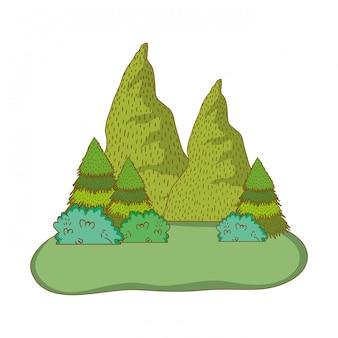 山の自然の風景