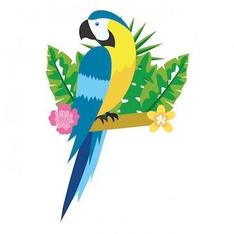 Милый тропический попугай