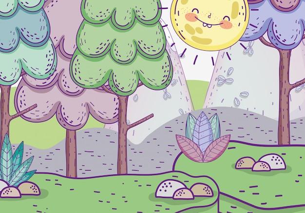 太陽と石と植物のある自然の木