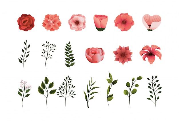 花びらと葉を持つ熱帯の花植物を設定します。