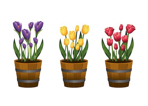 植木鉢の中の葉と花とバラの植物を設定します。