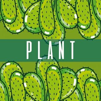 サボテンの緑の植物の概念