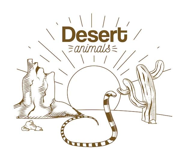 Пустыня животных рисовать мультфильм