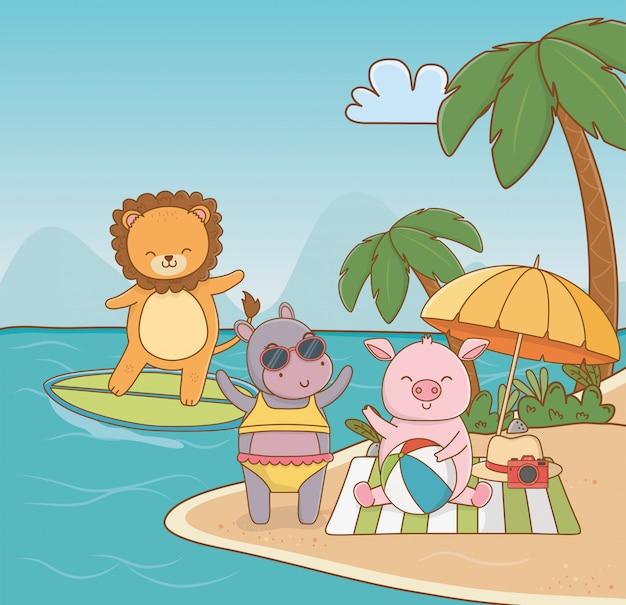 Свинья бегемот лев на пляже