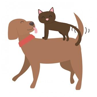 猫と犬の漫画